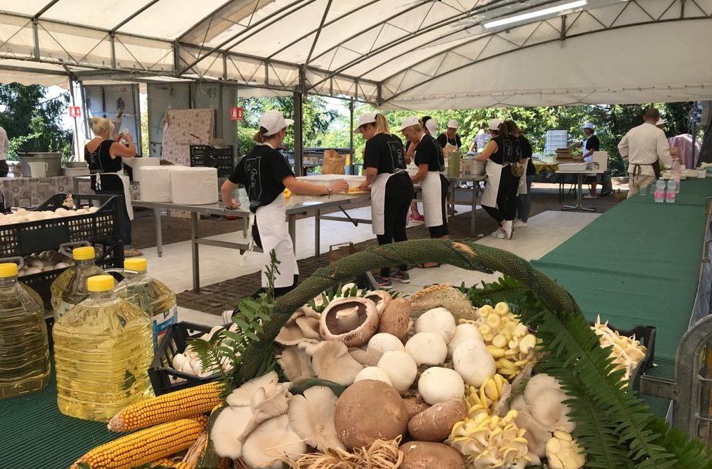 """Sabato 17 agosto 2019, la """"Sagra dei Funghi delle Terre di Romagna"""" a Montescudo"""