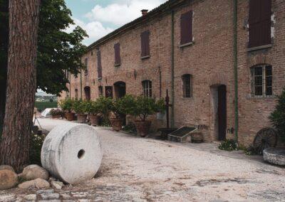 Fattoria del Piccione - San Savino