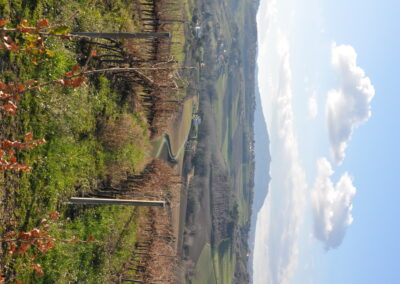 Crinale della Serra - Valliano