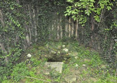 Fonte di Monte Colombo