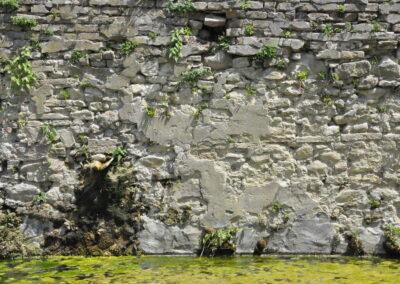 Lavatoio - Montescudo